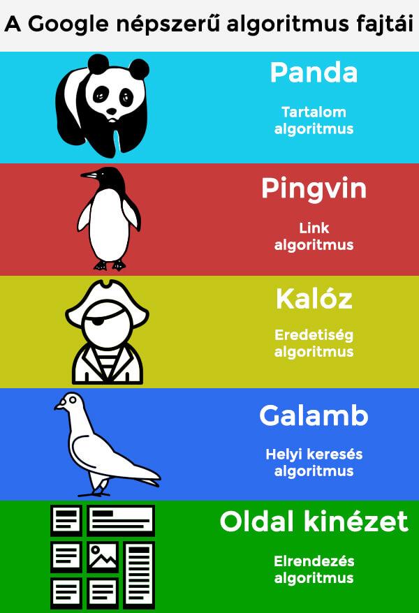 Google népszerű algoritmus fajtái